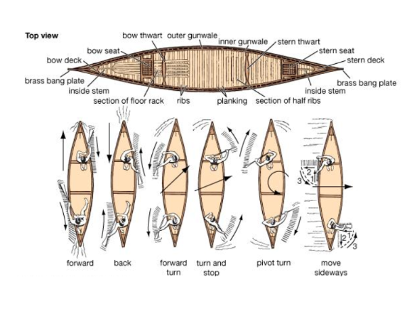Canoe Diagrams for MOVT.PNG