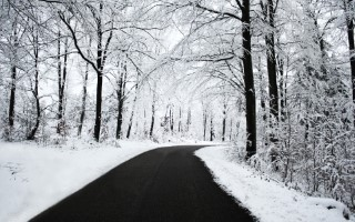 Winter-Wallpaper.jpg