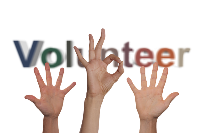 volunteers-2653980_640.png